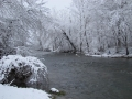 Tye River Deep In the Winter - Rose Isle Farm